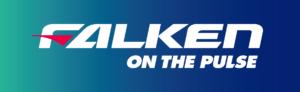 Logo officiel Falken